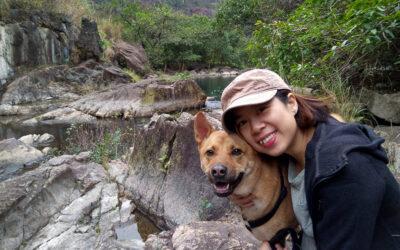 Deutsch lernen in Hongkong – Mein Weg zum C1 Deutsch Niveau